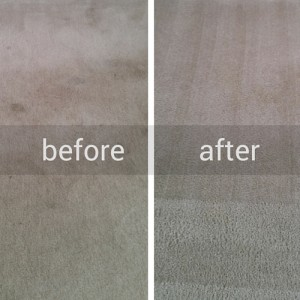 Newgen Restores Before and After Carpet Cleaning