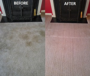 In this article we discuss why carpet stains reoccur and what you can do about it.
