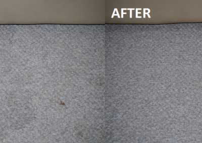 Client's Stubborn Stain Removed