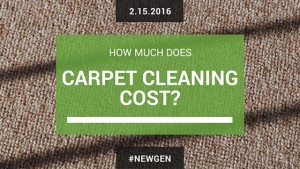 In this article, we discuss how much carpet cleaning usually costs and how it's calculated.