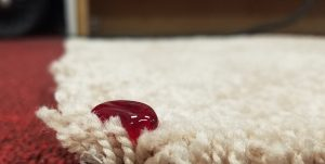 5 carpet care tips to help keep your carpets looking 100%.